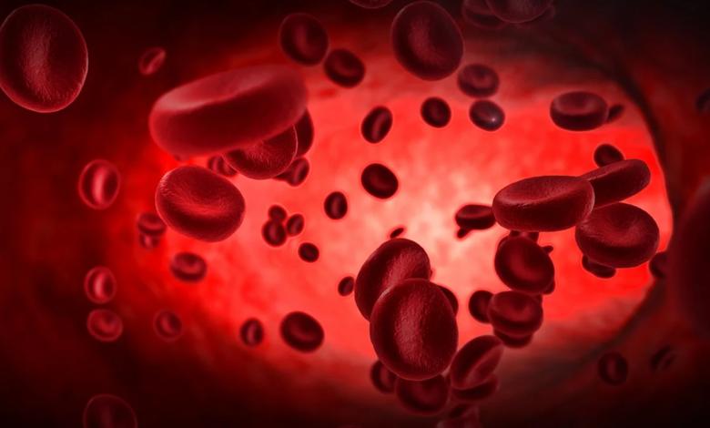 hemofili nedir