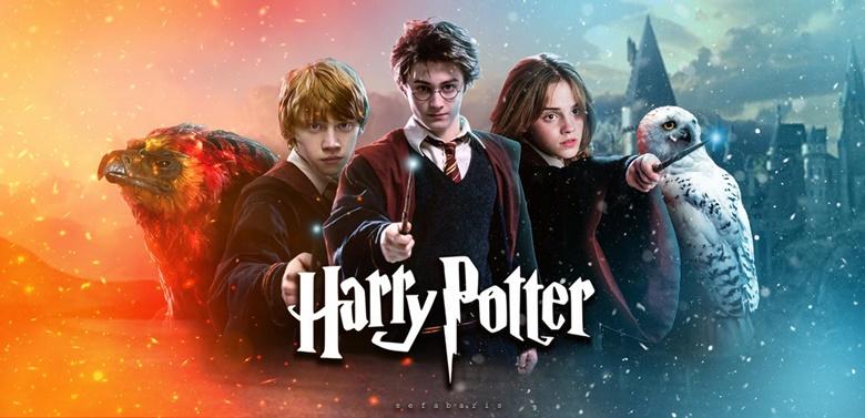 Harry Potter Film Serisi